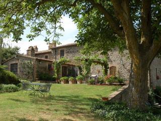 Villa Cappelli - Ficulle vacation rentals