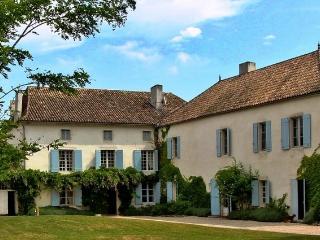 Chateau De Bardoulye - Lalinde vacation rentals