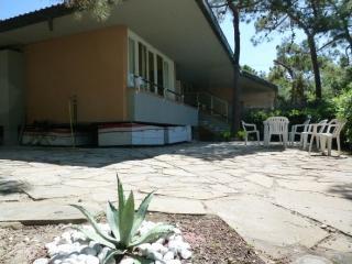 Bellissima villetta sulla spiaggia con giardino - Punta Ala vacation rentals