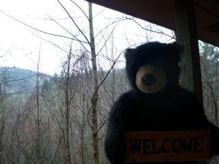 Week Special!Helton Falls Lodge-Bear Getaway cabin - Blairsville vacation rentals