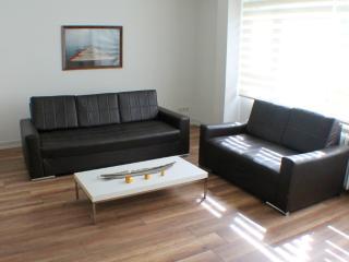 3BR LUXURY HOUSE NEAR TAKSIM - Istanbul vacation rentals