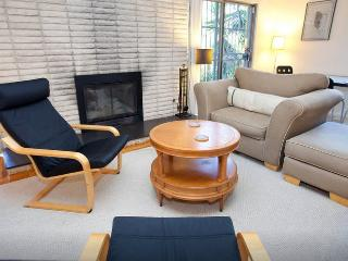 Large studio in Silver Lake with fireplace & deck - Los Angeles vacation rentals