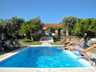 Quinta Paraiso - Portalegre vacation rentals