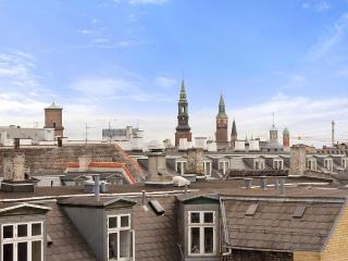 Sunny Penthouse With Roof Terrace - Copenhagen vacation rentals