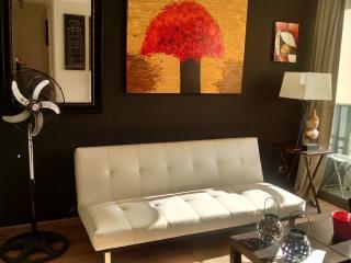 Nice , cozy and comfortable 2BD 1BTH apartment - Santiago vacation rentals