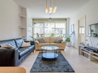 fabulous apartment in Emile zola st (new) - Tel Aviv vacation rentals