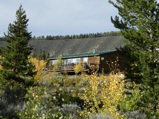 New Listing! Mountain Cabin,  Leadville - South Central Colorado vacation rentals