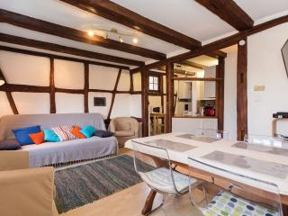 Baribal'ele *** Alsace, calme, centre-ville Colmar - Colmar vacation rentals