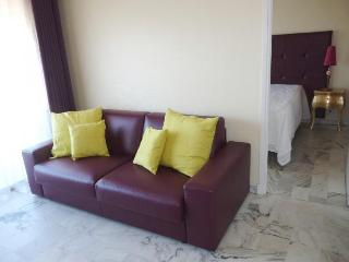 Fleuris Purple Affordable 1 Bedroom Vacation Rental in Cannes - Cannes vacation rentals