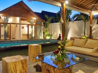 SEMINYAK - 4 bedrooms - 4 en suite bathrooms - tin - Kuta vacation rentals