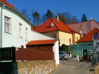 Club IFRE - Trebic vacation rentals