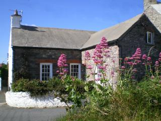 Yewdale Cottage, St. David's, Pembrokeshire, Wales - Saint Davids vacation rentals
