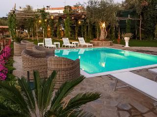 4 star villa with private pool - Massa Lubrense vacation rentals
