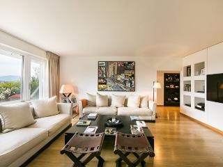 Splendid Penthouse - Lake Geneva vacation rentals