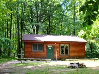 Aubert Den Private Cabin - Baldwin vacation rentals
