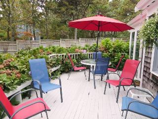 58 Longs Lane Chatham Cape Cod - Chatham vacation rentals