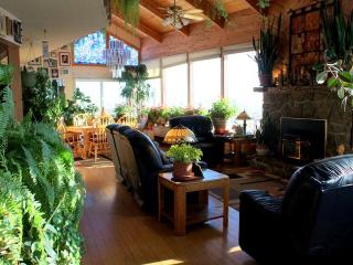 Sunny 3 bedroom house overlooking Livingston - Livingston vacation rentals
