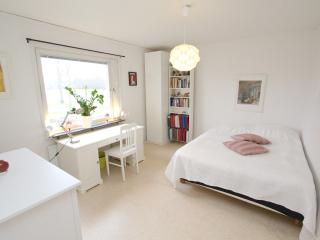 Spacious room near Arlanda Airport - Stockholm vacation rentals