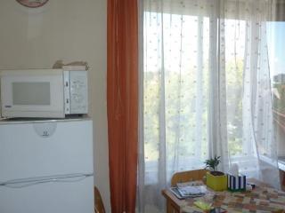 Örs vezér Apartment Beatle 01 - Budapest & Central Danube Region vacation rentals