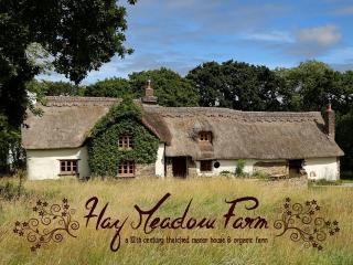 Hay Meadow Farm - Ashwater vacation rentals