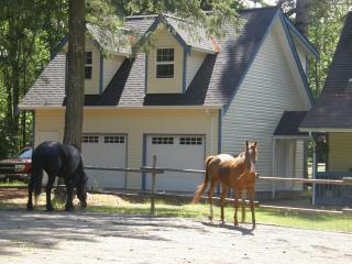 Cottonwood Ranch - Comox vacation rentals
