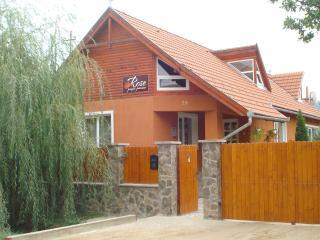 Pensiunea Rose - Lunca de Jos vacation rentals