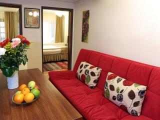 2Bed Room Apt w/Patio behind  BlueMosq - Istanbul vacation rentals