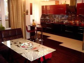 The excellent apartment in Riga - Riga vacation rentals