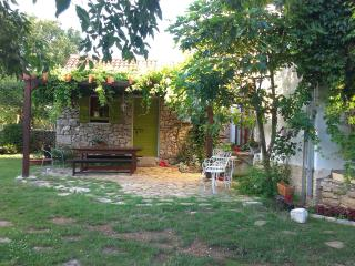 Mediteranian house with pool - Sibenik-Knin County vacation rentals