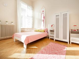 5BEDROOMs 18BEDs 3BATHs @HISTORICAL OLD-TOWN - Hungary vacation rentals