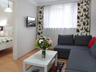 No distance 2d BlueMos, HagiaSophia & Center! - Istanbul & Marmara vacation rentals