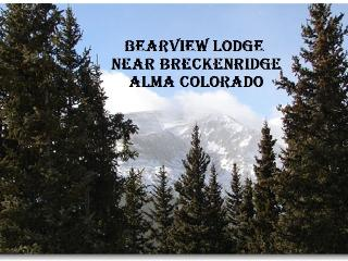 Bear View Lodge - Alma vacation rentals