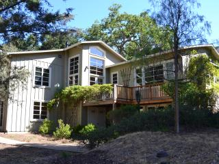 Carmel Valley Beautiful Country Home-30 DAY RENTAL - Carmel Valley vacation rentals