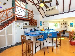 Penthouse w/jacuzzi Sleeps 6 Downt. - Playa del Carmen vacation rentals