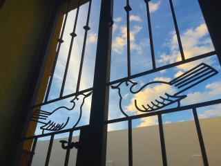 Nido de Pájaros: airy bird's nest in San Antonio - San Miguel de Allende vacation rentals