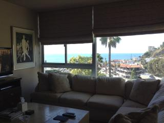 Ocean Views, Walk to the Beach, Tennis and Pool - Santa Monica vacation rentals