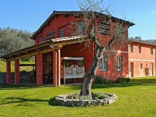 Casale Conca - Massarosa vacation rentals