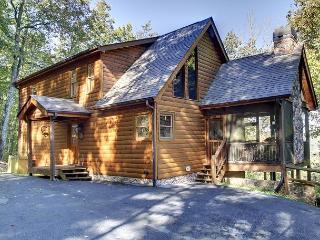 NORTH GEORGIA MTN HOME, 3 GAS LOG FIREPLACES, HOT TUB,  3 BEDROOM 3.5 BATH - Cherry Log vacation rentals