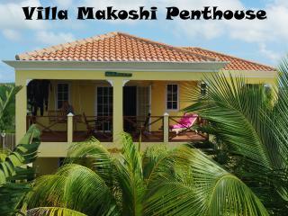 Makoshi - Penthouse - Bonaire vacation rentals