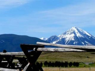 Cosy 1 br cabin in Paradise Valley, YNP Gateway - Pray vacation rentals