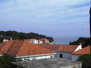 8300 SA2(2) - Bozava - Island Dugi Otok vacation rentals