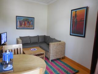 Newly Renovated One Bedroom Apartment - Kampala vacation rentals