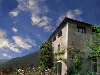 VILLA WITH PANORAMIC VIEW AND LARGE GARDEN - Calci vacation rentals