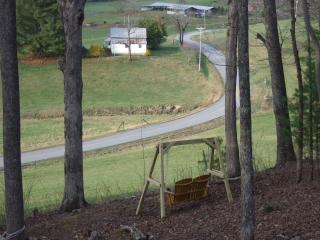 Choestoe Sanctuary-See why others love our cabin - Blairsville vacation rentals