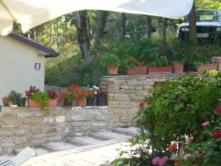 agriturismo becerca - Serra San Quirico vacation rentals