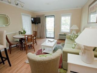 Ocean Dunes Villa 317 - 2 Bedroom 2 Bathroom Oceanfront Flat Hilton Head, SC - Hilton Head vacation rentals