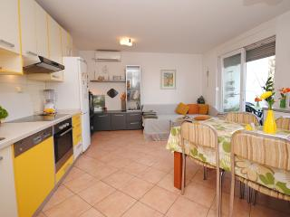 Two bedroom condo with private garden and barbecue - Kastel Stari vacation rentals