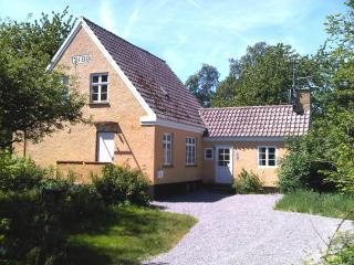 Balka deligt, spa vacation home on Bornholm - Balka vacation rentals