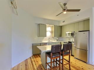Downtown Savannah Luxury 2 BR / 2 BA Loft - #00 - Savannah vacation rentals