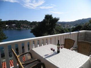 Apartment Nobilo3 near sea shore - Southern Dalmatia Islands vacation rentals